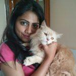 henna bella white cat pet photo  (6)