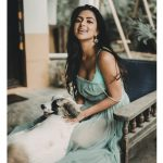 Amala Paul, dog, new look