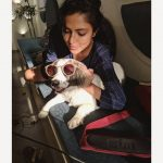 Amala Paul, dog, pet lover