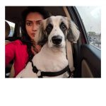 Amala Paul, selfie, car, dog