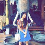 Janani Iyer, tour, Elephant, full size