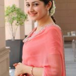 Kadaikutty Singam, Success Meet, recent, Sayyeshaa