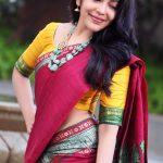 Ramya Subramanian, latest, hd, saree