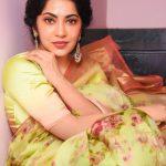 Ramya Subramanian, saree, best picture
