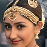 Sayyeshaa, kadaikutty singam, saree, traditional look