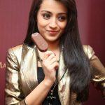 Trisha Krishnan, ice cream, brand