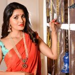 Vani Bhojan, gorgeous, red saree, treditional
