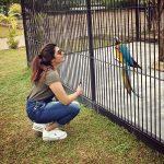 Aathmika, zoo, birds
