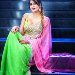 Meera Mitun, full size, latest, saree