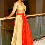 Meera Mitun, large size, event, super