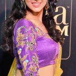 Riya Suman, Paper Boy Actress,  award function, side pose, spicy