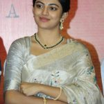 Anandhi, press meet, movie