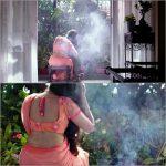 Anupama Parameswaran, glamour, saree, Hello Guru Premakosame