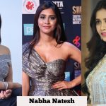 Nabha Natesh, Nannu Dochukunduvate