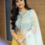 Nabha Natesh, Nannu Dochukunduvate, cute, best, event