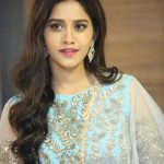 Nabha Natesh, Nannu Dochukunduvate, event, hd, wallpaper