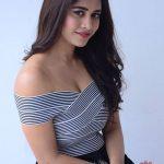 Nabha Natesh, Nannu Dochukunduvate, hair style, glamour, actress