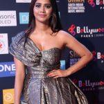 Nabha Natesh, Nannu Dochukunduvate, siima award, event, glamour