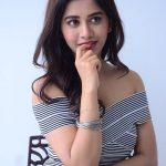 Nabha Natesh, Nannu Dochukunduvate, unseen, glamour, event, photoshoot