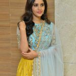 Nabha Natesh, Nannu Dochukunduvate. movie, tollywood actress