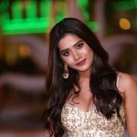 Nabha Natesh, cover, siima award in 2018, telugu actress