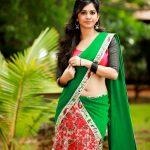 Nannu Dochukunduvate, Nabha Natesh, glamour, tollywood, saree
