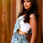 Nannu Dochukunduvate, Nabha Natesh, rare, photoshoot, telugu