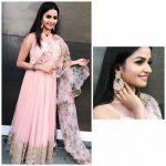 Nithya Ram, Nandini serial Actress, function