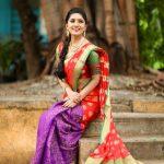 Vani Bhojan, saree, glamour, photo shoot, Kings of Comedy Juniorsis