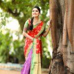 Vani Bhojan, saree,large size, cute, recent,