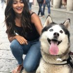 Pooja Hegde, dog, shooting, tamil actress
