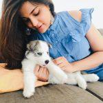 Aathmika, dog, pet