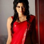 Oviya helen, Photo Shoot, red saree, glamour, hip