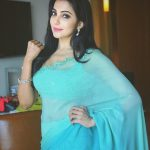 Parvatii Nair, saree, hd, wallpaper, tamil actress
