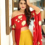 Payal Rajput, hd, full size, rx 100, actress