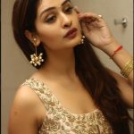 Payal Rajput, unseen, cute, event, glamour
