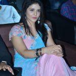 Priyanka Jawalkar, Taxiwala actress, saree, event