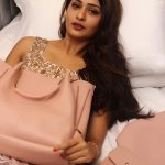 RX 100, Payal Rajput, handbag, unseen