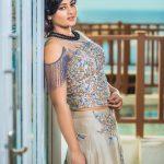 Suja Varunee, Sujatha Naidu, photo shoot, new dress