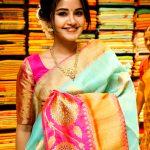 Anupama Parameswaran, hd, saree, tamil actress