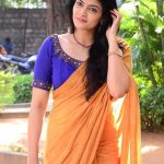 Kalpika Ganesh, orange saree, recent click