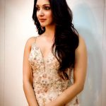 Kiara Advani, shy, VVR Pre Release, hindi actress