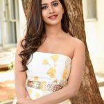 Nabha Natesh, Adhugo Actress,  pretty