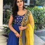 Nabha Natesh, Adhugo Actress, voilet dress