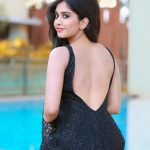Nabha Natesh, Glamorous Photo Shoot, back side, swimming pool, spicy
