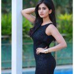 Nabha Natesh, Glamorous Photo Shoot, black fit, dazzling
