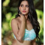 Nabha Natesh, Glamorous Photo Shoot, classy look