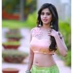 Nabha Natesh, Glamorous Photo Shoot, graceful