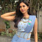 Nabha Natesh, event, adorable