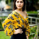 Raashi Khanna, tamil actress, telugu, imaikka nodigal